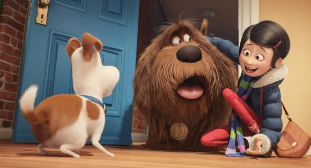 The secret life of pets max's owner brings home duke