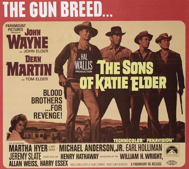The sons of Katie Elder movie poster